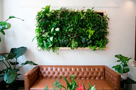 Floating plants on wall over brown leather couch, vertical garde