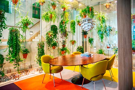 flowers decoration in modern hall